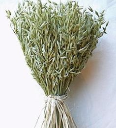 Avena Green Oats Centerpiece- love this for a super easy farm or country feel. Looks great in kitchen or living room. DriedDecor.com #driedwheat #driedflowers #homedecor #springdecor