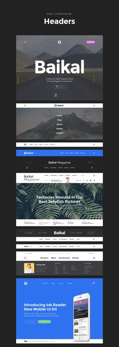 Baikal – Stylish Web