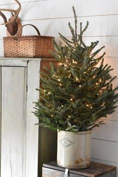 SIMPLE Rustic Farmhouse Christmas Tree in Crock - Country, Primitive Decorating for the Winter Season Christmas decorations Rustic Farmhouse Christmas Home Tour 2017 - Rocky Hedge Farm Noel Christmas, Christmas Music, Simple Christmas, White Christmas, Christmas Lights, Vintage Christmas, Christmas Swags, Burlap Christmas, Natural Christmas