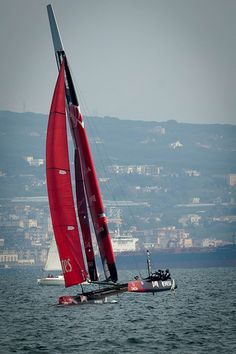 America's Cup #14