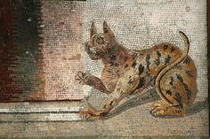 Detail of a mosaic from the House of the Faun, Pompeii | Flickr - Photo Sharing!