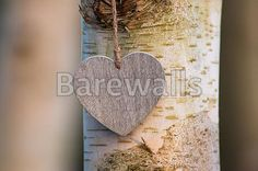 """""""Love heart tree trunk"""" - Love posters and prints available at Barewalls.com"""