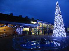 Christmas at Peppa Pig World.  Paultons Park Christmas Wonderland Review > http://www.tripadvisor.co.uk/ShowUserReviews-g503839-d215576-r187022742-Paultons_Park_Home_of_Peppa_Pig_World-Romsey_Hampshire_England.html