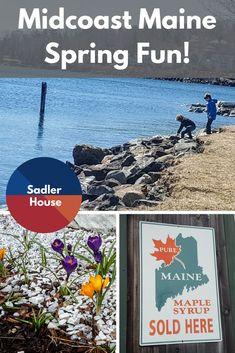 Midcoast Maine Spring Fun