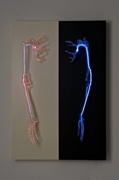 """Eric Franklin / An anatomical study of the human body considering the mind and body as one entity. Flameworked borosilicate glass, krypton, wood, 78"""" x 36"""" x 24"""", 2006-2008, Roberts Family Fine Art Collection."""