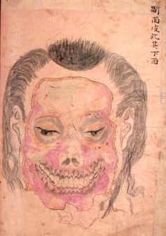 Seyakuin Kainan Taizōzu (circa 1798)    These illustrations are from the book entitled Seyakuin Kainan Taizōzu, which documents the dissection of a 34-year-old criminal executed in 1798. The dissection team included the physicians Kanzen Mikumo, Ranshū Yoshimura, and Genshun Koishi.