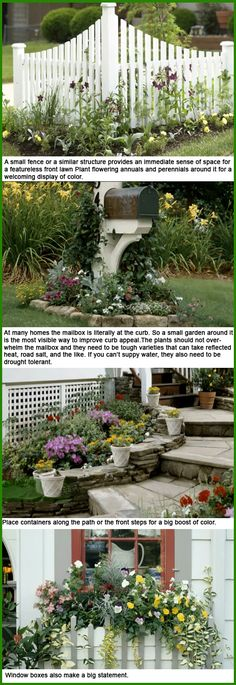 Some ideas for curb appeal using plants.