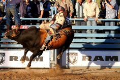 5 Reasons To Check Out The 2016 Reno Rodeo