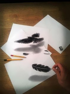 Illusion Drawings by Ramon Bruin optical illusion drawing Easy 3d Drawing, Easy Drawings, Amazing Drawings, Realistic Drawings, Drawing Art, Feather Drawing, Amazing Artwork, Awesome Art, 3d Pencil Drawings