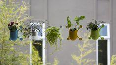 Livi is a versatile vertical planter