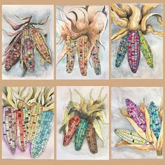 Art Room Britt: Indian Corn Pen and Watercolor Illustrations Thanksgiving Art Projects, Halloween Art Projects, Fall Art Projects, 7th Grade Art, Middle School Art Projects, Pen And Watercolor, Art Lessons Elementary, Autumn Art, Art Lesson Plans