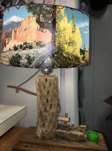Mid Century Photo Lamp Shade On Funky Well Like Base Lamp