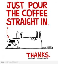 Just Pour The Coffee Straight In. Thanks.