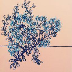 Florecillas azules... Montjuic. Tinta China y lápiz de color. #illustrationmarianas