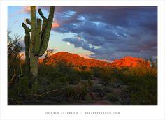 Sunset, Papago Park, Phoenix, Arizona