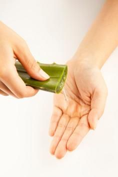 Benefits of Aloe Vera Juice for Hair among these: prevent hair loss and stimulating hair growth, treating dandruff,hair rinse, make a shamppo using coconut milk, aloe vera gel and wheatgerm oil,