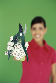 Keep your Arabian lilac in shape with simple hand pruners.