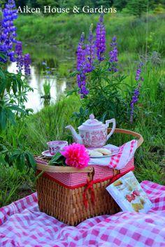 Aiken House & Gardens: Picnic Style Tea among the Lupins