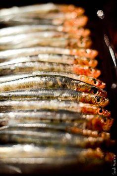Serrées comme des sardines