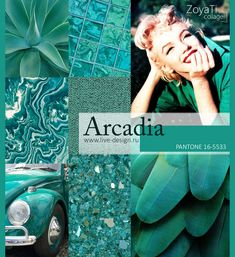 Модный цвет Pantone 2018 - Arcadia. Коллаж от Зои Ти