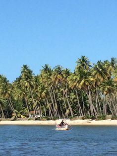 Brazil Brasil Brassil__Praia dos Carneiros/Tamandaré - Brasil 2014
