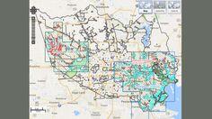 FEMA flood map of Houston