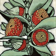 "Botannical art ""Eucalyptus macrocarpa"" from botanicals series by Sydney artist Julie Hickson. Australian Wildflowers, Australian Native Flowers, Australian Artists, Indigenous Australian Art, Botanical Drawings, Botanical Illustration, Botanical Prints, Linocut Prints, Art Prints"