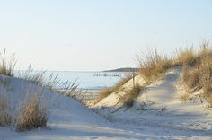 Kiptopeke State Park has two beaches, and a fishing pier smack dab in the middle on Virginia's Eastern Shore