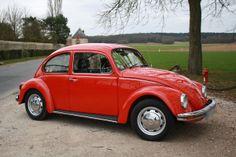 VW Beetle-OWNED IT.,,