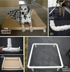 Bed Easy And Affordable Diy Ideas Homestylediarycom Easy Dog Bed easy diy dog bed - Easy Diy Crafts Raised Dog Beds, Dog Frames, Diy Dog Bed, Diy Bed, Dog Furniture, Animal Projects, Diy Projects, Easy Diy Crafts, Pet Beds