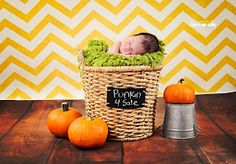 Photography by Stacey Anne: Oliver {Newborn} | Denver, CO | newborn, family, portrait photography