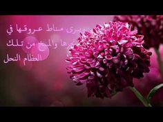 أحمد بو خاطر - نشيد يا من يرى مع الكلمات