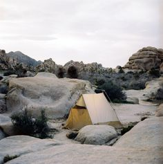 Joshua Tree N.P. - Brings back memories from camping in Scouts - great rockclimbing routes and freeclimbing the boulders.