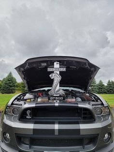 Shelby Mustang Hood Prop - 24 Inches