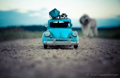 The Kings of the World by Kim Leuenberger, via 500px