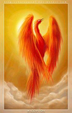 Phoenix Dragon, Phoenix Art, Phoenix Design, Phoenix Tattoo Design, Fantasy Creatures, Mythical Creatures, Phoenix Animal, Vape Pictures, Phoenix Images