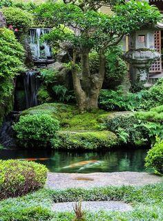 In a Japanese Garden Achte auf die Größe/das Alter der Fische, rechts das Teehaus, links der Wasserfall, beides liegt etwa auf gleicher Höhe. Ja und dann noch dieser Baum, das Moos Hhhhhmmmmm!!!! Sehr Schn!