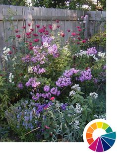 Color idea for slope rock garden