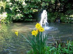 Giardino Botanico - André Heller - Der Garten, Giardino Botanico - André Heller - Giardino, Giardino Botanico - André Heller - The Garden @LagoGardaPoint
