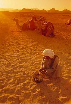 Bedouins, Sinai, Egypt, North Africa