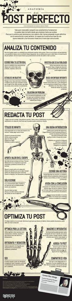 Anatomía del post perfecto #infografia
