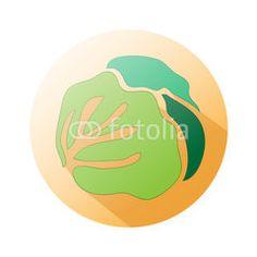 Market lettuce icon #button #fotolia #design #concept #tool #cart #shop #online #services #icon #vector #business