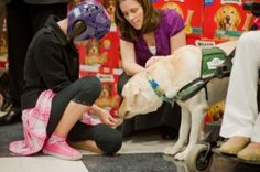 On Thursday, Salazar and her family attended a brief ceremony inside the Camp Pendleton commissary, where officials with Canine Assistants and Milk-Bone spoke about what a major difference a well-trained dog can make for sufferers of debilitating conditions.    Read more: http://www.nctimes.com/news/local/sdcounty/camp-pendleton-veteran-s-daughter-to-get-service-dog-from/article_ad2514c6-03b5-59ad-b1c4-6233fcfe4fb6.html#ixzz1nb1Cf8ld