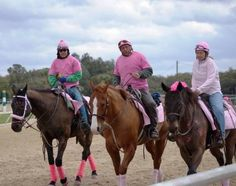 Pony Riders had a great time decorating and outfitting their pony horses in support for Susan G. Komen for the Cure!