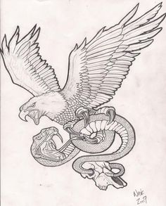 Image result for snake and eagle fighting