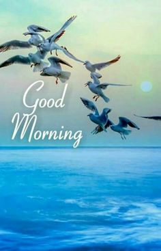 Very and very cute morning. Good Morning Nature Images, Good Morning Friends Images, Good Morning Beautiful Pictures, Latest Good Morning Images, Good Morning Inspiration, Good Morning Picture, Good Morning Flowers, Morning Pictures, Good Morning Sunrise