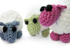 sheep- you gotta love 'em.