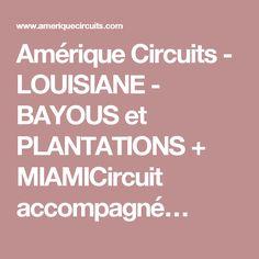Amérique Circuits - LOUISIANE - BAYOUS et PLANTATIONS + MIAMICircuit accompagné…