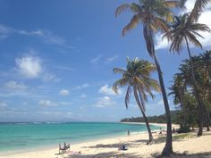 """See 13 photos and 4 tips from 112 visitors to Marie-Galante. """"Free wifi at Ornata bar at the Port :-)"""" Marie Galante, Pointe A Pitre, Four Square, Beach, Water, Outdoor, Nice Beach, Beaches, Flowers"""