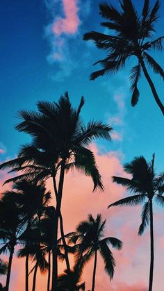 IPhone wallpaper - beautiful wallpapers for mobile phones. Visit and . IPhone wallpaper - beautiful wallpapers for mobile phones. Visit and . Tumblr Wallpaper, Tree Wallpaper Iphone, Best Iphone Wallpapers, Pretty Wallpapers, Aesthetic Iphone Wallpaper, Nature Wallpaper, Cool Wallpaper, Aesthetic Wallpapers, Wallpaper Backgrounds